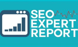 Get detailed SEO report of your website ($20 | PKR. 2000)