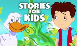 Stories for your Book or School ($30 | PKR. 3000)