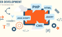 Custom Website Design & Development ($1 | PKR.100)